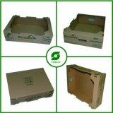 Caja de cartón seca de diversa dimensión de una variable para la venta al por mayor de la fruta y verdura