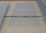 PVCによって塗られる/Galvanizedの六角形の金網か網
