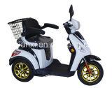 Motorino Handicapped elettrico con Ce