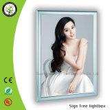 Publicidad de la venta caliente de aluminio delgado LED de iluminación Fotografía de Caja de luz
