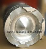 Maschinenteil-Kolben-Installationssatz 3801819, 3048808 Cummins-Nt855