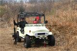 Automático 250cc ATV, 75km / H eléctrico ATV con Ce