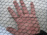 Hexagonal Wire Netting for Feeding, Galvanized gold PVC