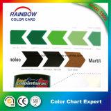 Forma diferente do folheto do cartão da cor de Matt/pintura de lustro