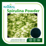 Beste Prijs het Uittreksel Poeder Spirulina/Spirulina van 100%/BulkFabrikant Spirulina