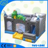 Beaux châteaux plein d'entrain gonflables d'intérieur extérieurs