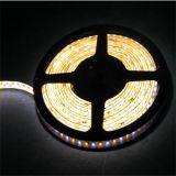Heißer des Produkt-CRI>90 DC24V 3000k+6000k 3528 SMD LED Streifen Streifen-Beleuchtung RGB-LED mit ETL