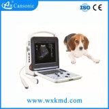 Ultra-som veterinário portátil da cor