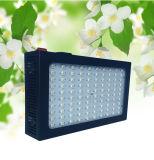 Fábrica Wholesale 216W Hydroponics LED Grow Lights para Greenhouse Plant