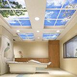Impression de bonne qualité populaire de film de plafond d'extension de décoration de modèle neuf