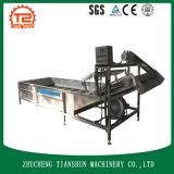Schoonmakende Machine van de Luchtbel van de hoge druk de Automatische, Wasmachine Fruit&Vegetable/de Wasmachine van de Bel
