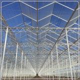 ガラス温室の屋根/側面のための緩和された安全拡散ガラス