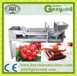機械を作るフルーツのダンの皮の生産ライン