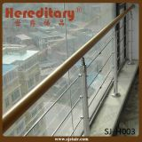 Corrimão da escada do aço inoxidável da montagem da parede (SJ-H1443)