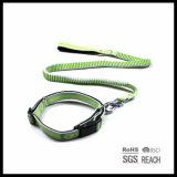 De elastische Leiband en de Kraag van de Hond van het Huisdier van de anti-Schok Intrekbare