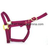 Cabeçada do cavalo do equipamento equestre (HPA-150)