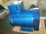 Single-Phase Honypower 2kw-50kw St와 Stc 삼상 솔 AC 발전기