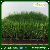 Natuurlijk kijk het Modelleren Kunstmatig Gras
