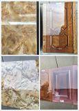 La capa ULTRAVIOLETA/cubrió la máquina del secador de Machine/UV