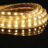 3528SMD LED 가벼운 다색 Dimmable 빛 보장 2 년