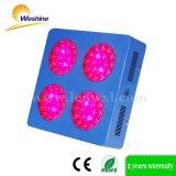 o diodo emissor de luz dos girassóis 216W cresce claro para vegetais de frutas da planta