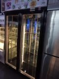 Refrigerador do Showcase do indicador da flor fresca com filtro do etileno