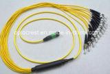MPO-FC impermeabilizzano i cavi ottici della zona della fibra