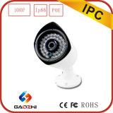 新しいDesign 2MP 1900tvl Poe IP Camera External Microphone