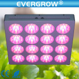 높은 PAR Modular 600W LED Grow Lighting