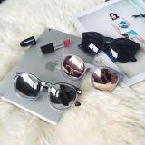 Vidros do frame do Eyeglass com estilo quente