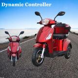 동적인 관제사 (TDR24K616)를 가진 전기 세발자전거