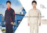 Uniforme scolaire global de vêtements de travail de robe de fatigue de chemise de vêtements de travail de Dungaree de combinaison