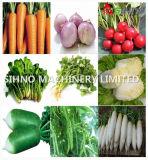 Сеялка Jang нажима руки 2 рядков Vegetable для семян томата лука