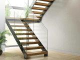 Wrought de interior Iron Rod Railing Staircase con Solid Wood Tread