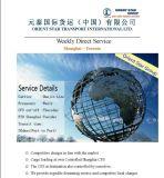 Carga de FCL de China a Toronto, Canadá