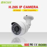 1.3MP IPWDR IR wasserdichte CCTV-Gewehrkugel-Überwachungskamera