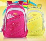 Cinque sacchetti dello zaino del banco del capretto di colori