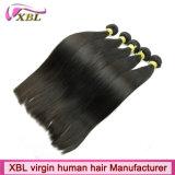 Extensões brasileiras do cabelo humano do Virgin da venda por atacado da fábrica do cabelo de Xbl