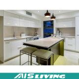 Самомоднейшая мебель неофициальных советников президента для проекта (AIS-K025)