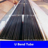 La Cina U Bend Tube con Competitive Price