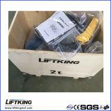 Hijstoestel van de Keten van de Snelheid van Liftking 2t het Dubbele Elektrische met de Opschorting van de Haak (ECH 02-01D)