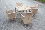 屋外の藤の庭の柳細工のダイニングテーブルおよび椅子