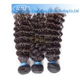 Qualitäts-lockiges Haar-brasilianisches Jungfrau-Haar