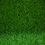 Tt Tennis Sport für Artificial Grass