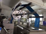 PVC/Pet/PE/Foam Band-stempelschneidene Maschine (RBJ330mm)