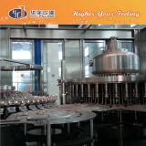 애완 동물 병 주스 음료 충전물 기계 (RCGN24-24-8)