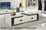 セットされる贅沢な居間の家具(118#)
