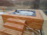Vasca calda della nuova di disegno 2016 STAZIONE TERMALE esterna calda di vendita (6)