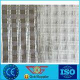 I filamenti della fibra di vetro hanno ricoperto di polimero elastomerico