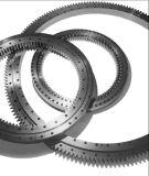Vitesse externe 06 de roulement de plaque tournante de roulement de boucle de pivotement de Rollix 1595 04